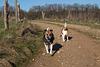 Jack Russell Terrier Rico und Clifford DSC09907