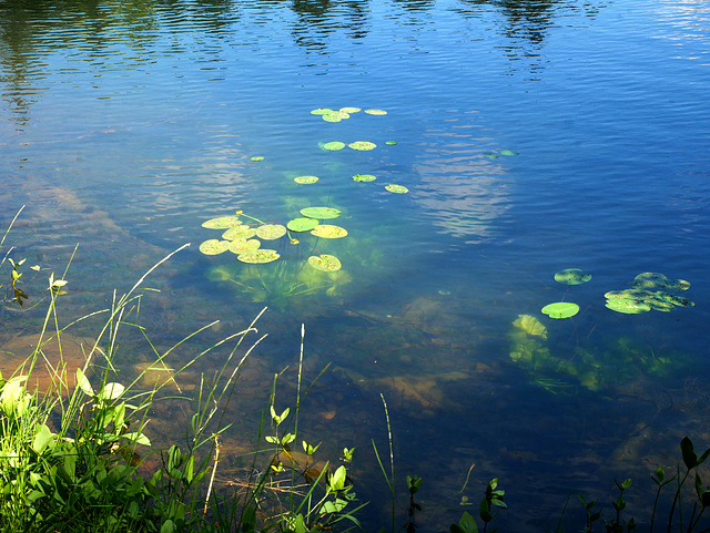 bleu profond du lac