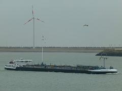 Inventory at Zeebrugge - 31 May 2015
