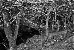 Footbridge near Brockham, Surrey.