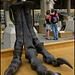Tyrannosaurus bigfoot