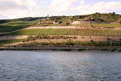 Rüdesheim am Rhein und das Niederwalddenkmal