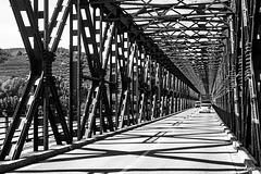Wachau ++ Donaubrücke bei Krems