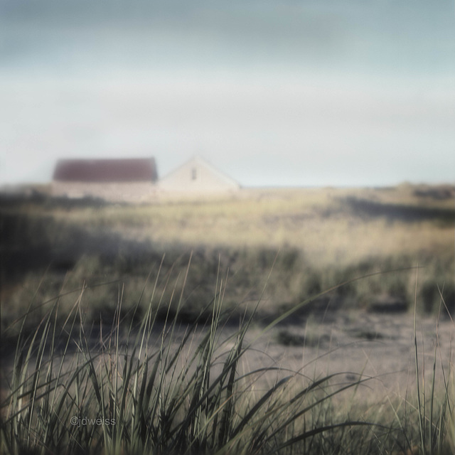 house on the dunes