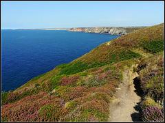 South West Peninsula Coast Path, near Newdown's Head. For Pam.