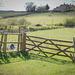 Across the meadow.. 'Ridgeway' south Sheffield.