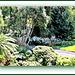 Pukeiti Gardens