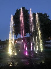 Abends im Kurpark