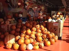 Toronto gets ready for Halloween