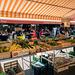 Cours Saleya (2)