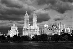 Central Park Landscape