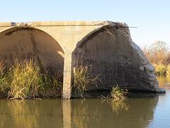 Gillespie Dam