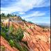 Pink cliffs, Bryce Canyon