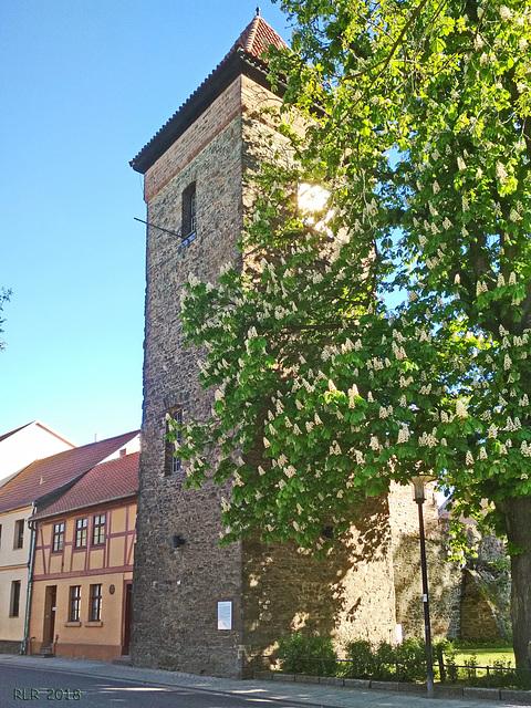 Haldensleben, Bülstringer Torturm Feldseite