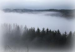 le temps des brouillards est arrivé