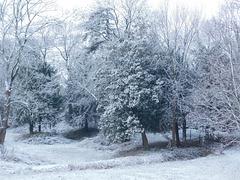 La neige est tombée cette nuit...