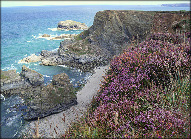 Ralph's Cupboard and bell heather, Cornwall