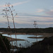 """Barragem do Odeleite, at one of the """"branches"""" almost at night"""