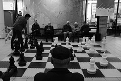 Playing chess in the library of Rotterdam
