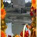 Bel automne avec une composition faite à partir d'une photo du moulin de Beauchet à Saint Père marc en poulet (35)