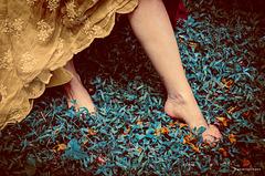 Bajo mis pies