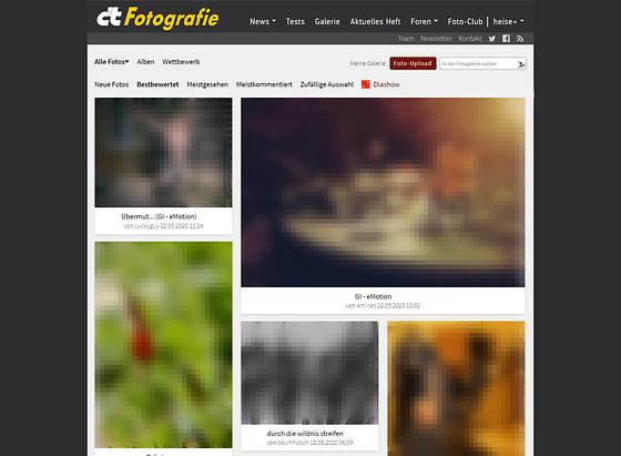 FireShot Pro Screen Capture #039 - 'Foto Galerie - c't Fotografie' - www heise de