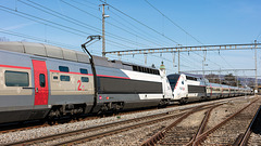 190321 Rupperswil TGV 3