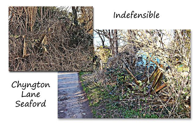 Indefensible - Chyngton Lane - Seaford - 14.3.2016
