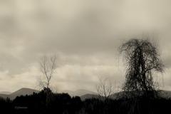 catskill skyline