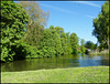 River Wey at Millmead