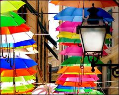 Un lampione in un mare di ombrelli !