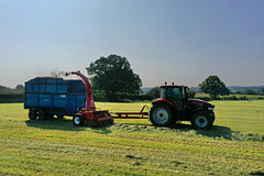 Silage time