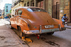 orange cats love orange cars