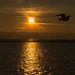 West Kirby marine lake sunsets (1)