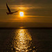 West Kirby marine lake sunsets (2)