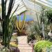 Cactus House.