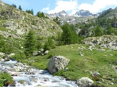 ...paysage du Mercantour...