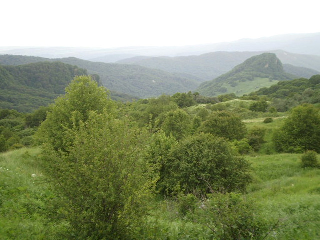 Green mountains.
