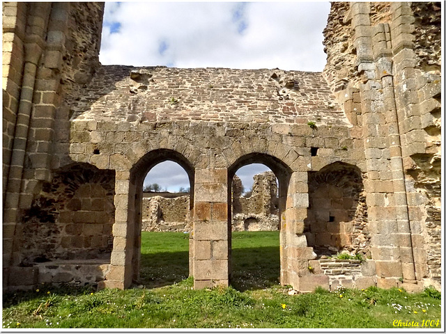 All what remains : ruins of Savigny Abbey