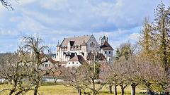 Schloss Thurn und Taxis- Dischingen