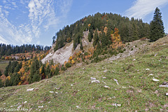 Feurstätterkopf (1.645m) im Herbstkleid
