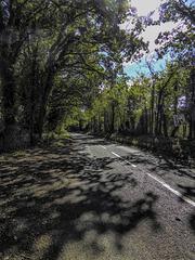 View up Binton Lane