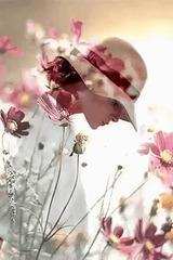 Rose printemps !
