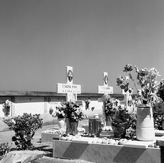 Cimitero San Liberatore- Massa Lubrense