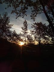 Le soleil se réveille .....