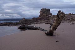 Tonnara Plage/Beach