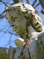 lavender hill cemetery, enfield, london