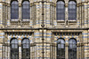 Windows into the Past – Natural History Museum, South Kensington, London, England
