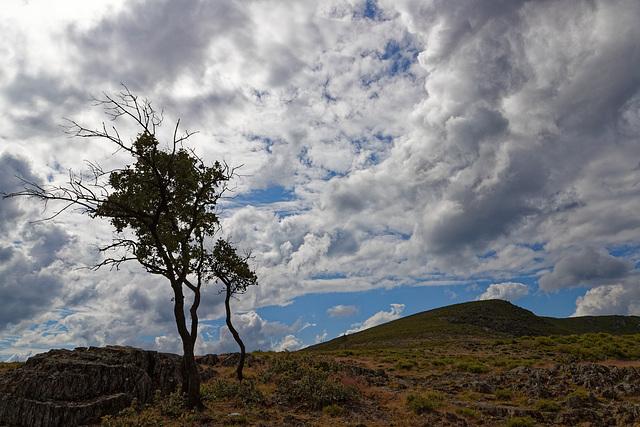 Serra de São Macário, Portugal