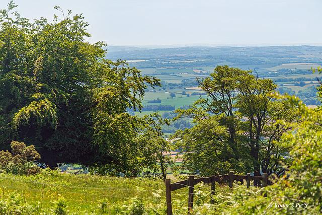 Vale of Taunton Dean, HFF.